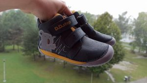 d-d-step-070