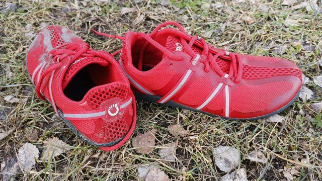 Xero Shoes Speed Force, recenzia
